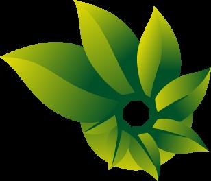 Icon Photosynth
