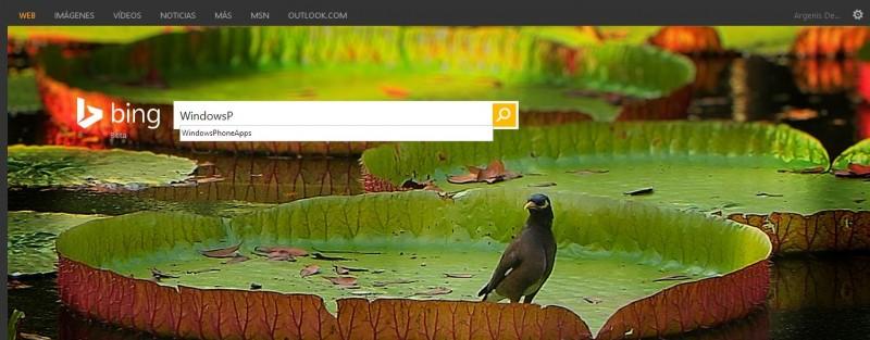 Bing WPA