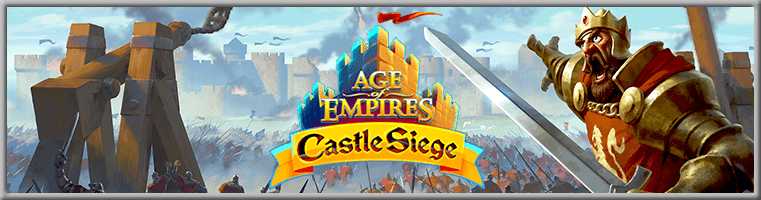 Age of Empires: Castle Siege Banner