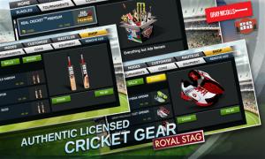 cricket 15 3