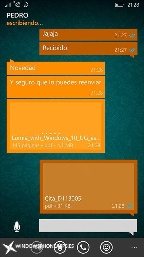 whatsapp-envio-archivos-version-publica