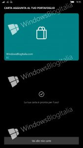 Cartera-Wallet-Microsoft-Windows-10-9