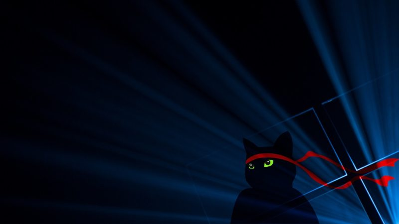 Windows_Insider_Anniversary-Ninjacat