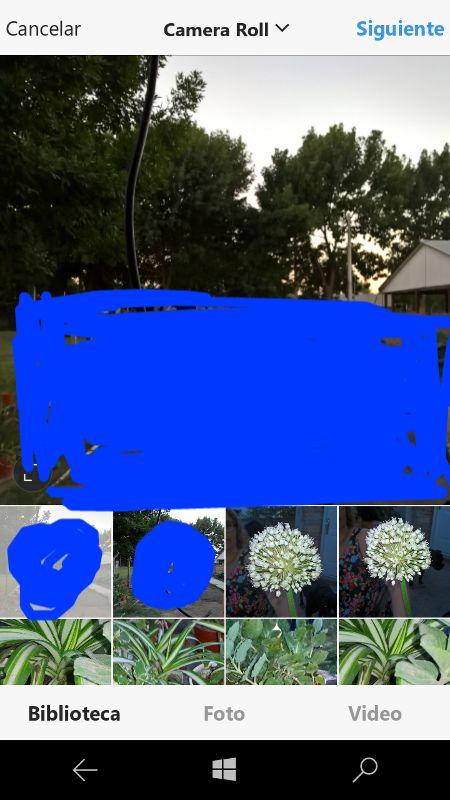 Instagram para Windows 10 Mobile se actualiza con transmisiones en vivo y más novedades