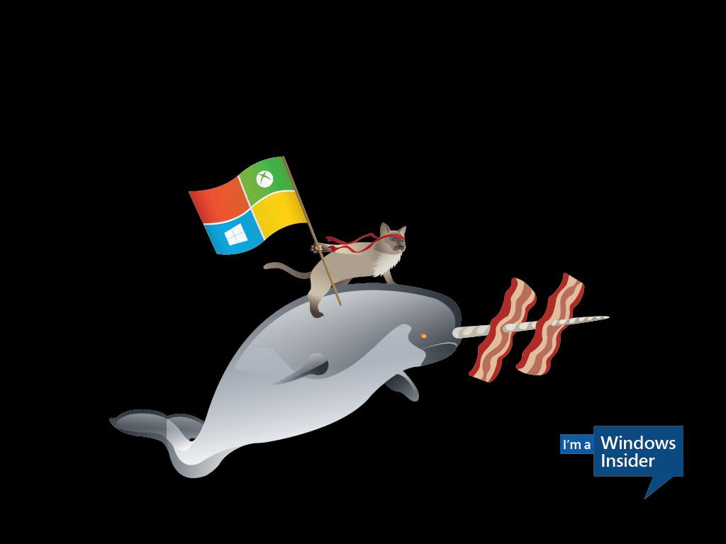 Microsoft pausa la llegada de nuevas builds Insider por el lanzamiento de la Creators Update