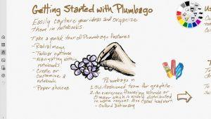 Plumbago_2