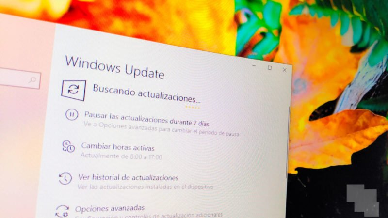 Microsoft lanza la Build 19042.450 para el canal Beta.