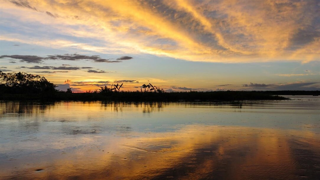 Amazon Landscapes PREMIUM