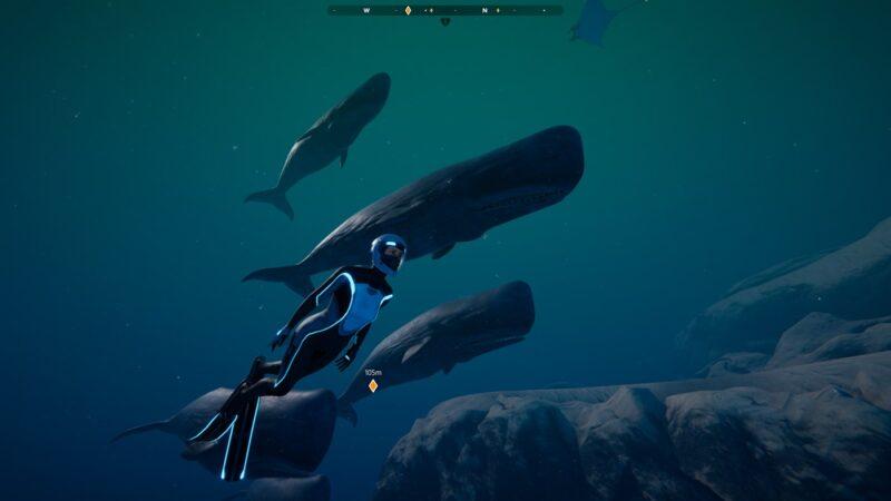 Nos relajamos en las profundidades marinas de Beyond Blue